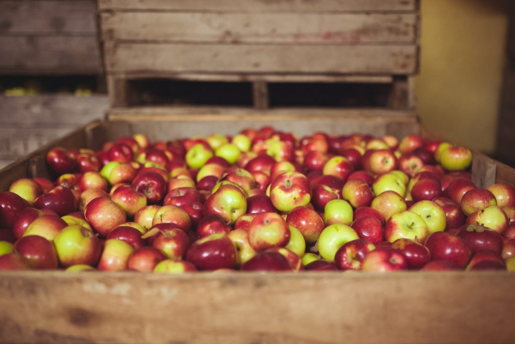 Produce apple harvest